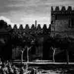Ampelopsis en la Casa de Blas Infante