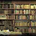 Librería El Laberinto: un elogio