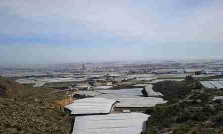El periodista Manuel Acién fue el gran informador del desarrollo agrícola de su tierra, El Ejido.