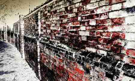 ley de propiedad intelectual contra los autores-muro