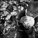 Conciencia global para las profundas transformaciones inaplazables