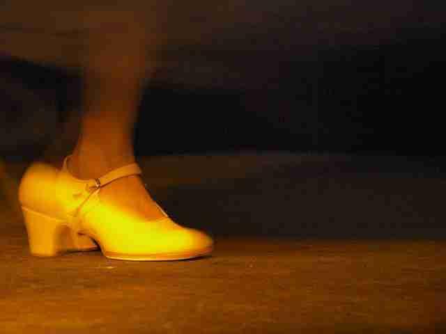 Flamenco-Paquera-Menacho. Foto de Swamibu