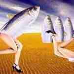 La mujer pez