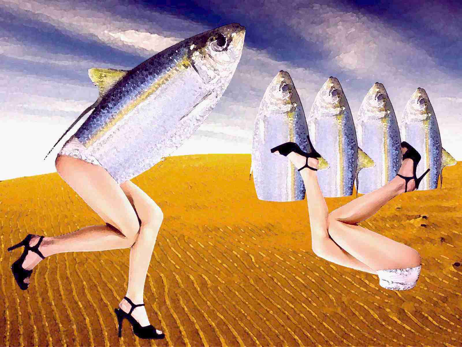 La mujer pez | secretOlivo