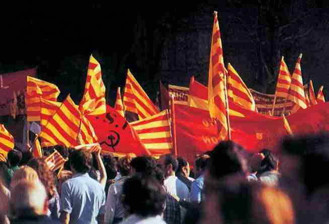 Apuntes andaluces desde Cataluña | secretOlivo