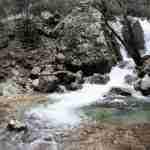 Confesión a una ninfa del agua