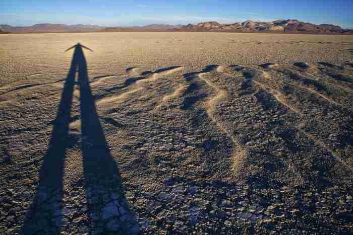 Un lugar para las sombras. Foto de Bob Wick