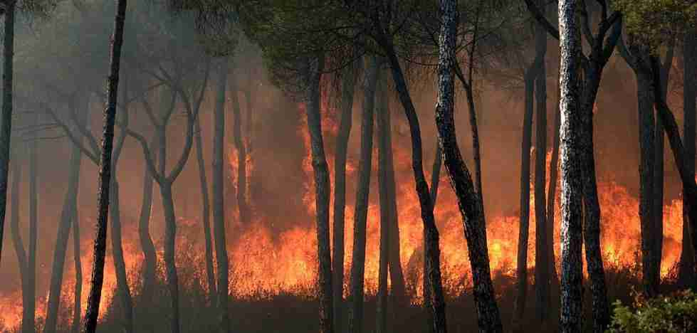 Arde, arde y arde