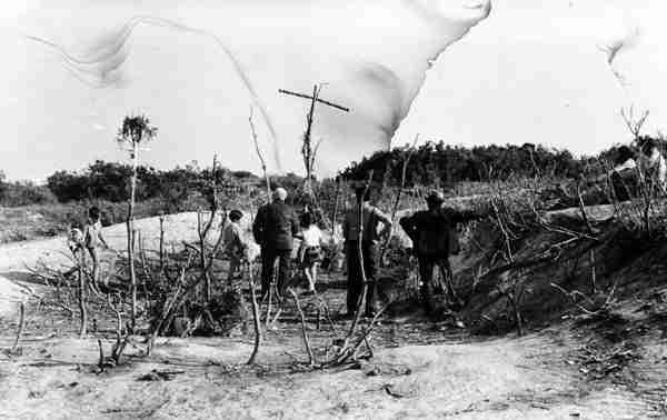 El lentisco de El Palmar de Troya. Foto de Ignacio Darnaude