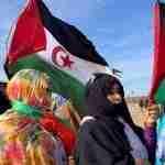 El Sahara Occidental y nosotros